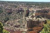 Gran Canyon National Park — Stock Photo