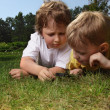 Royalty-Free Stock Photo: Two boys with magnifying glass outdoors