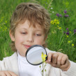 Royalty-Free Stock Photo: Boy with magnifying glass outdoors