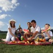 Families picnic outdoors with food — Stockfoto