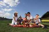 Families picnic outdoors with food — Stock Photo