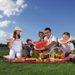 Stock Photo: Outdoors picnic