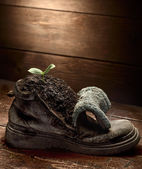 Green sprout in grunge boot — Stock Photo