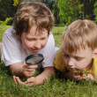 Two boys with magnifying glass outdoors — Stock Photo #23625051