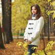 Beauty girl in autumn park — Stock Photo #34717599