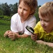 Boys with magnifying glass outdoors — 图库照片