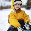 Happy boy on sled — Stock Photo #35908903