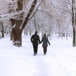 Winter forest couple — Stockfoto