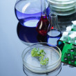 Stock Photo: Laboratories experiment