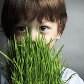 Boy with grass, studio shot — Stockfoto