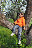 Happy boy on tree — Stock fotografie