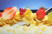 corn flakes and fruit — Stock Photo