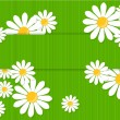 Greeting card with daisies - Imagen vectorial