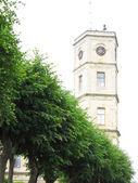Palace tower — Stock Photo