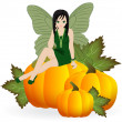 Fairy on a pumpkin — Stock Vector #48368235
