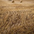 Wheat Bale and Storm Clouds — Stock Photo #14061123