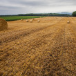 Wheat Bale and Storm Clouds — Stock Photo #14061583
