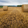 Wheat Bale and Storm Clouds — Stock Photo #14061704