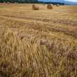 Wheat Bale and Storm Clouds — Stock Photo #14062346
