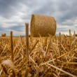 Stock Photo: Wheat Bale and Storm Clouds