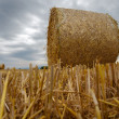 Wheat Bale and Storm Clouds - Stock Photo