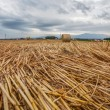 Wheat Bale and Storm Clouds — Stock Photo