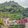 Manarola, Cinque Terre, Italy — Stock Photo #14131039