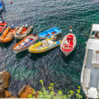 Boats at Riomaggiore, Italy — Stock Photo #14147790