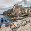 Boats at Riomaggiore, Italy — Stock Photo #14149117