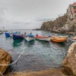 Boats at Riomaggiore, Italy — Stock Photo #14149362
