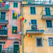 Royalty-Free Stock Photo: Colored Walls, Riomaggiore, Italy