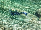 River Scuba Diving — Stock Photo