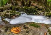 Jura Mountain Riverscape, France — Stock Photo