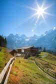 Alpi bernesi — Foto Stock