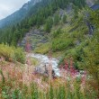Val Veny, Italy - Early Autumn — Stock Photo