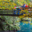 Blausee, Switzerland - The wooden bridge - Foto Stock
