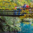 Blausee, Switzerland - The wooden bridge — Stock Photo