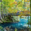 Blausee, Switzerland - Red Boats and Fall Foliage - Foto Stock