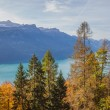 Bernese Alps and Lake Brienz - Stock Photo