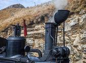 The green Brienz-Rothorn steam engine — Fotografia Stock