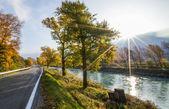 The River Rhone — Stock Photo