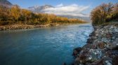 The River Rhone — Stock Photo