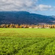 Geneva Countryside — Stock Photo