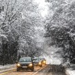 Snow in Geneva, Switzerland — Stock Photo