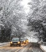 Snow in Geneva, Switzerland — Stock Photo