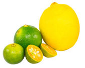 Calamondin, citron vert et citron — Photo