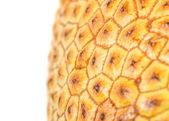 Cempedak Fruit Skin — Stock Photo