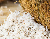 Coconut Flesh and Grated — Stock Photo