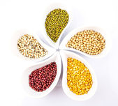 Beans and Lentils Variety — Stock Photo