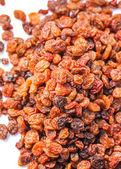 Raisins — Stock Photo
